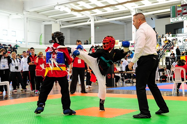 Kickboxen Geschichte
