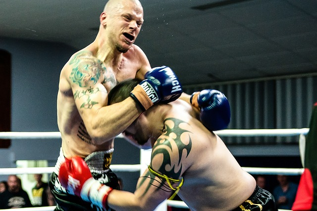 Links zum Thema Kickboxen